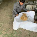 日本最古の御影石はやっぱり津和野町より発見されました!